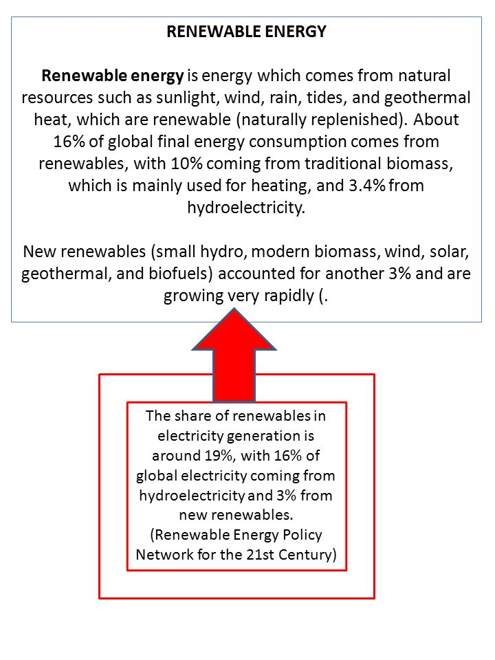 (Renewable Energy Policy Network for the 21st Century)