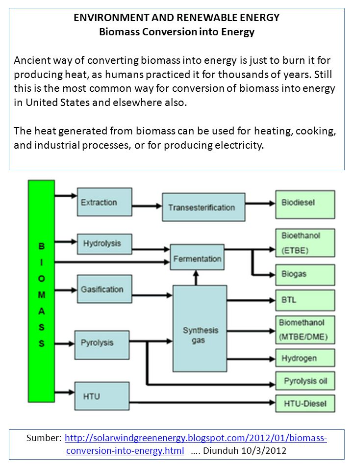 ENVIRONMENT AND RENEWABLE ENERGY Biomass Conversion into Energy