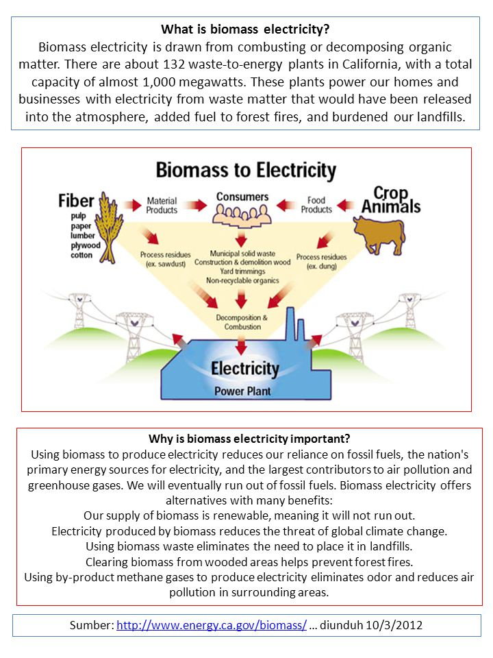 What is biomass electricity Why is biomass electricity important