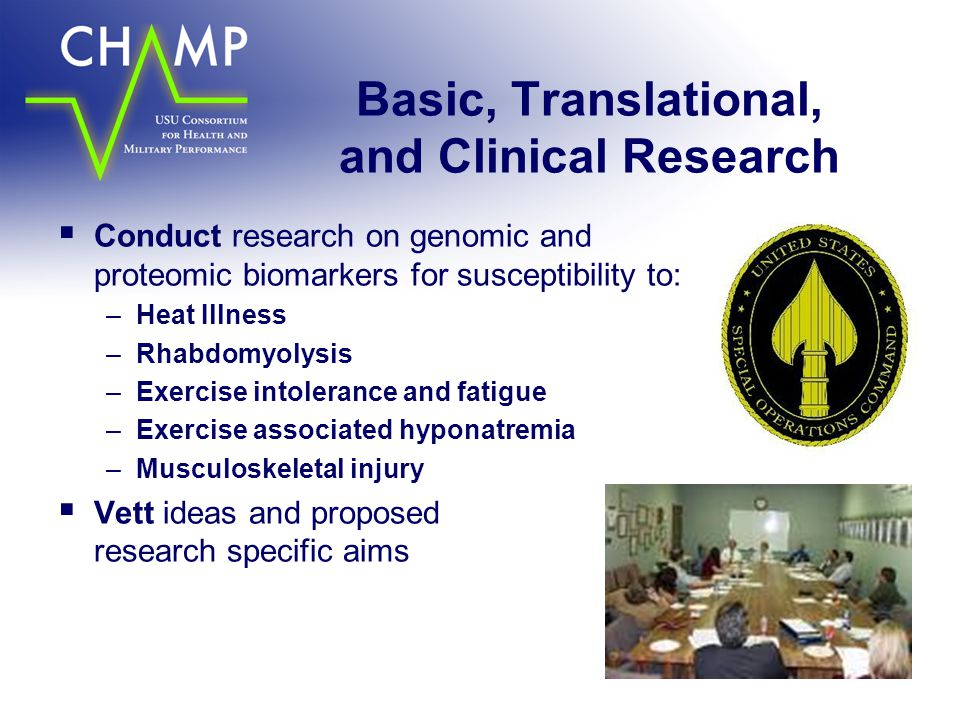 Basic, Translational, and Clinical Research