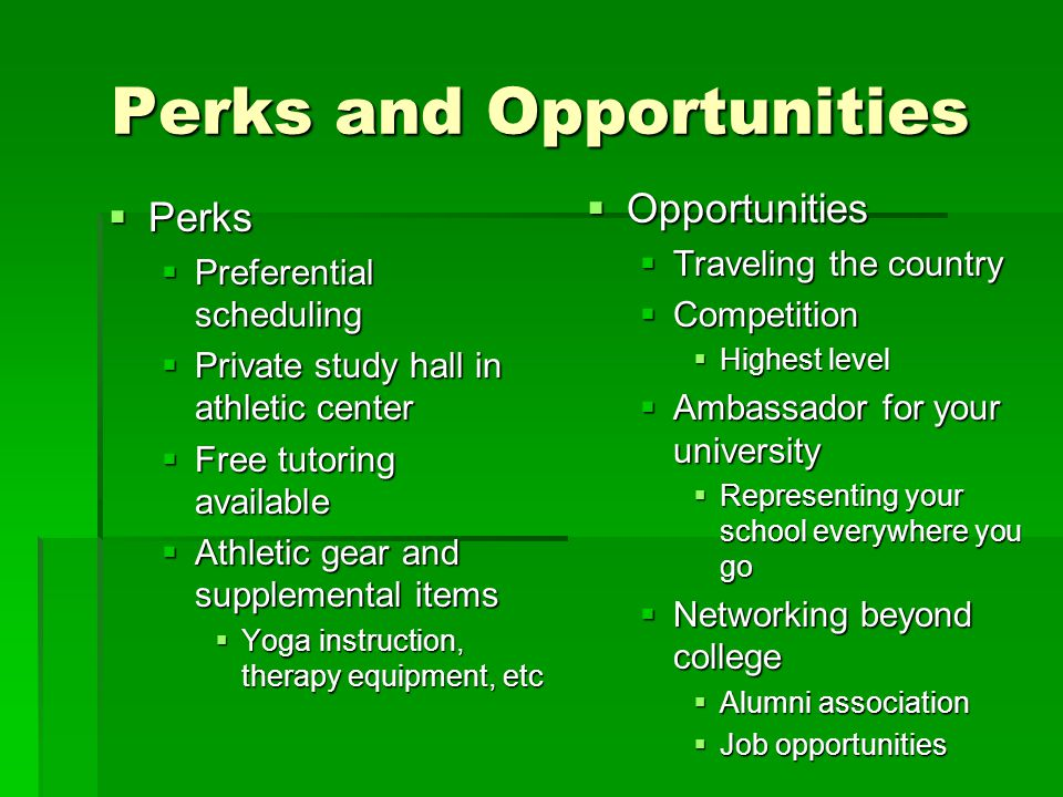 Perks and Opportunities