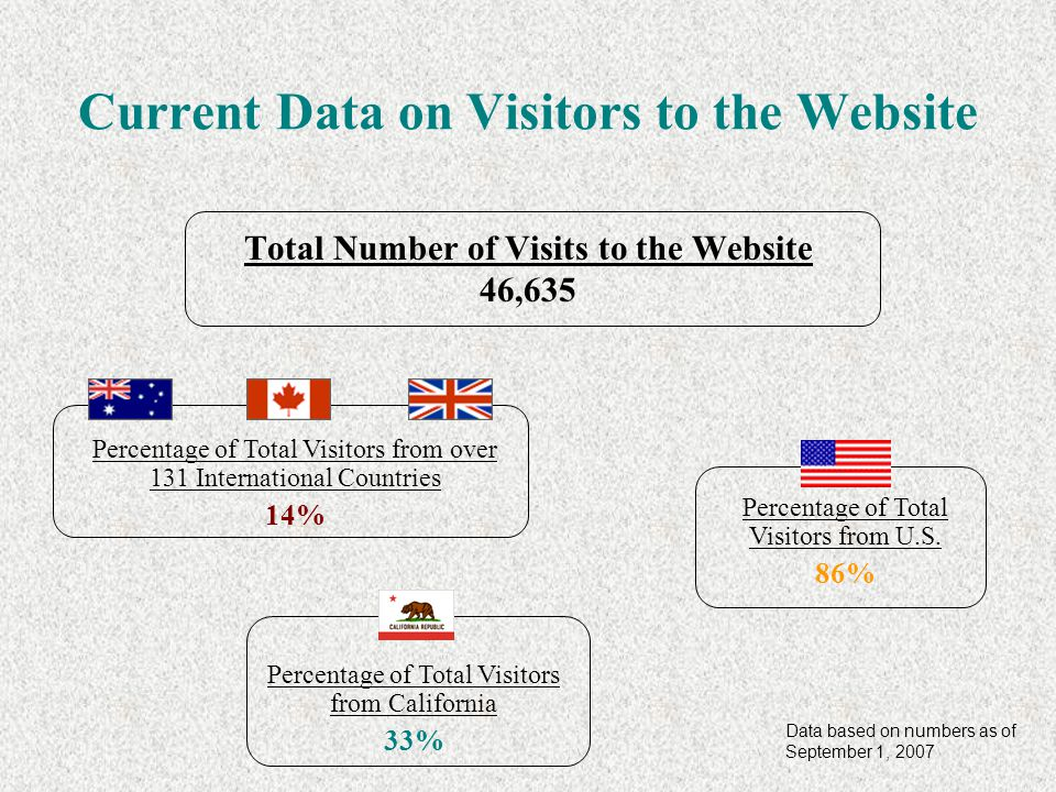 Current Data on Visitors to the Website