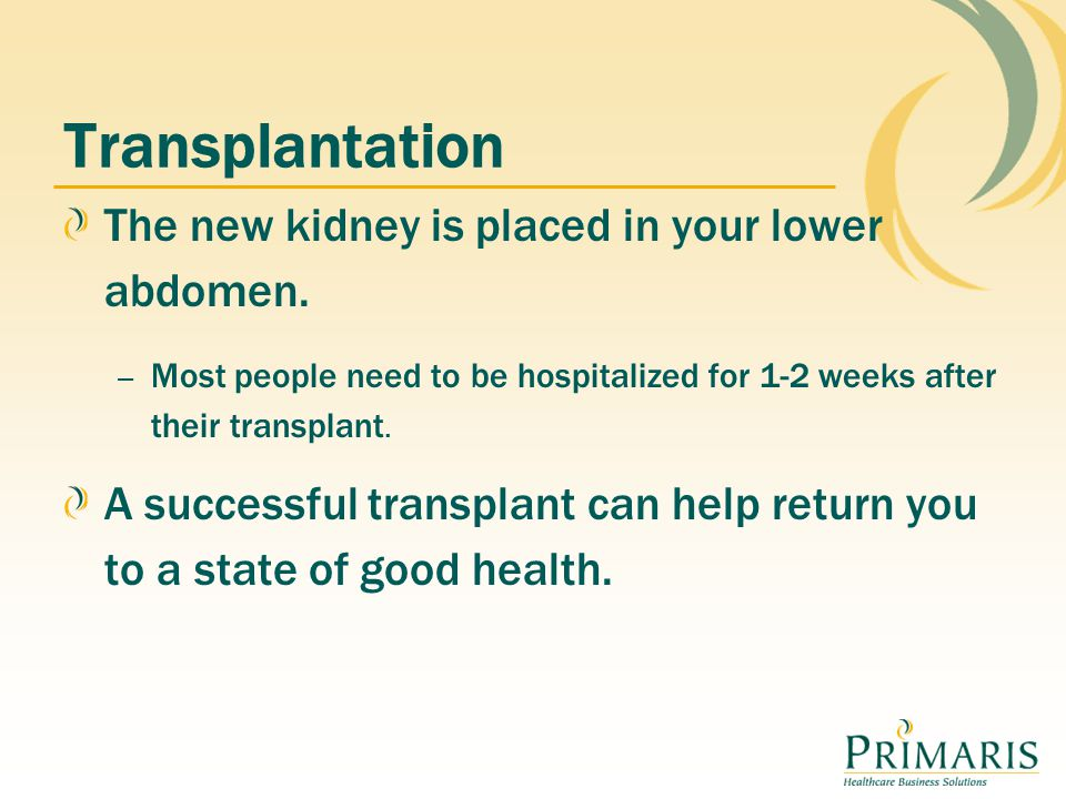 Transplantation The new kidney is placed in your lower abdomen.