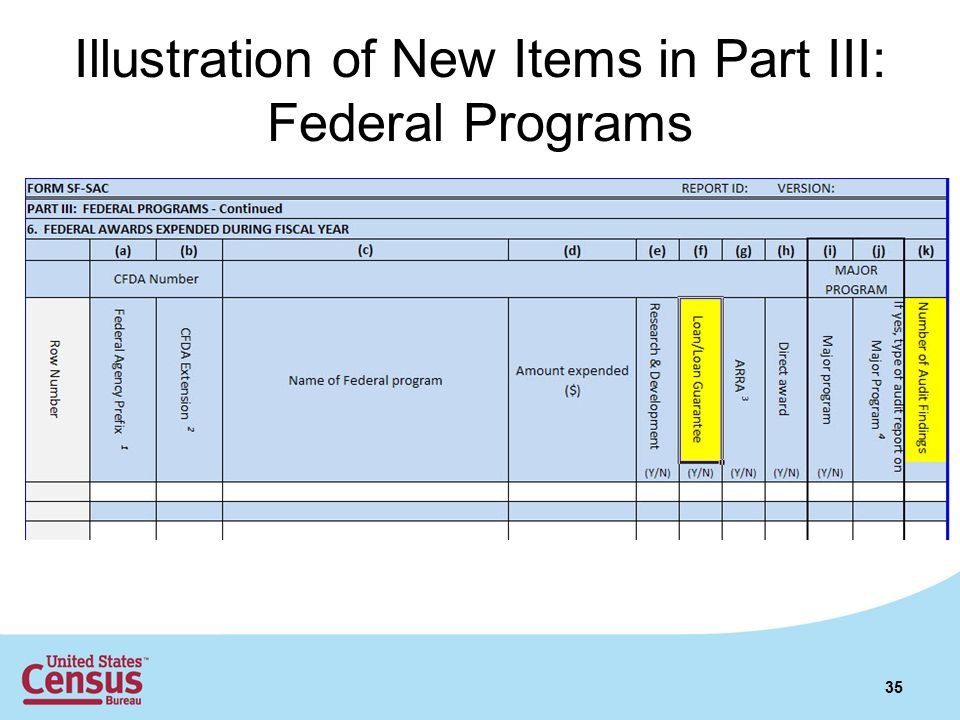 Illustration of New Items in Part III: Federal Programs