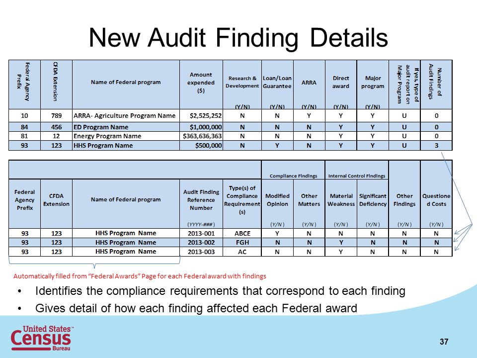 New Audit Finding Details