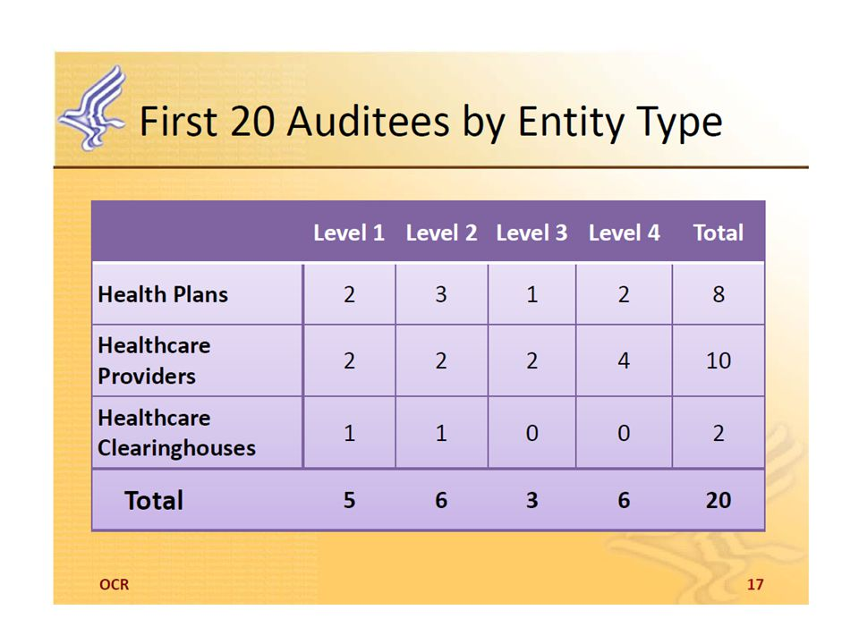 Level 1 > $1B, Level 2 between $300M and $1B, Level 3 between $50-300M, Level 4 Small practices