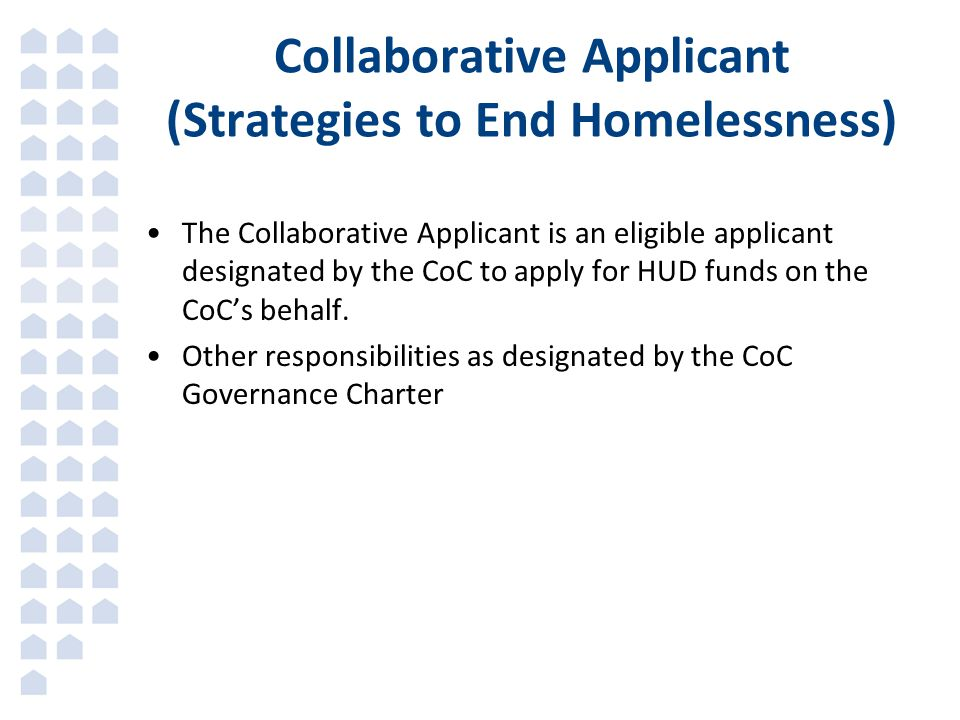 Collaborative Applicant (Strategies to End Homelessness)