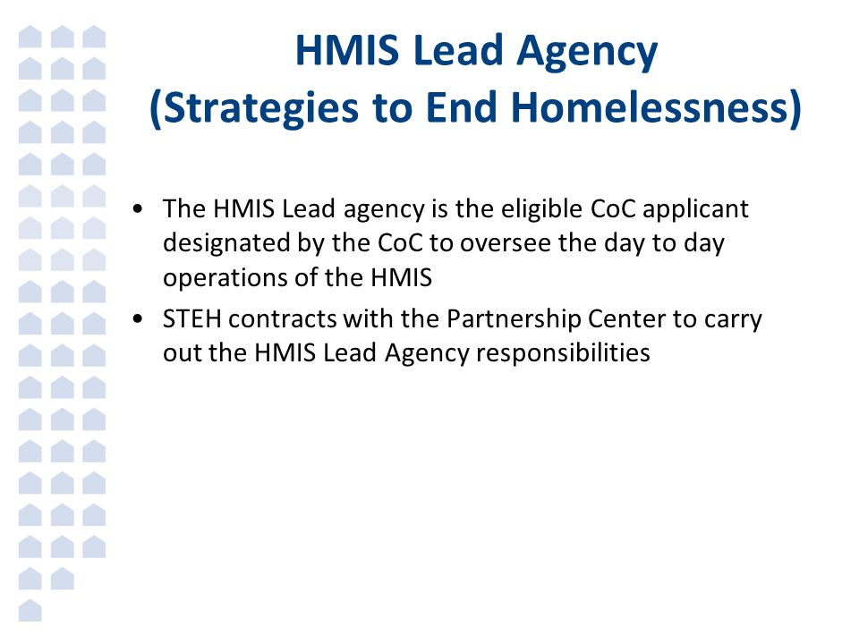 HMIS Lead Agency (Strategies to End Homelessness)