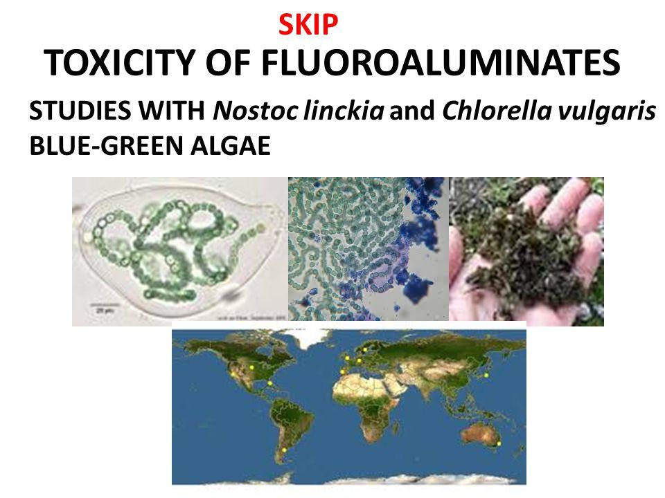 TOXICITY OF FLUOROALUMINATES