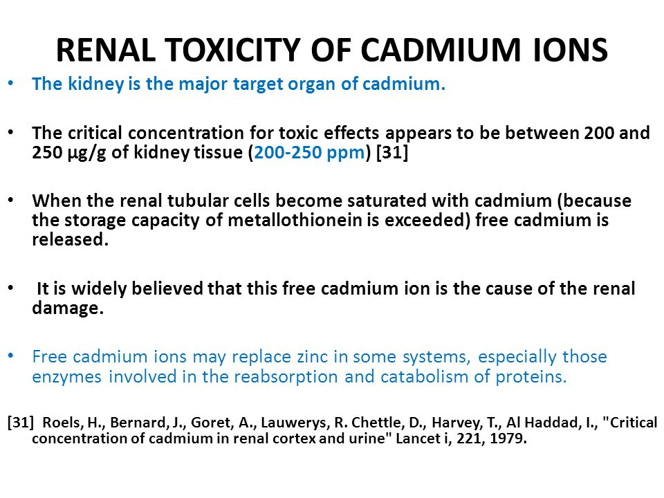 RENAL TOXICITY OF CADMIUM IONS