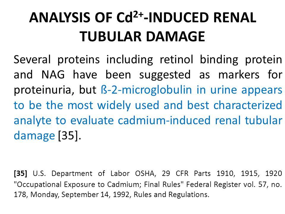 ANALYSIS OF Cd2+-INDUCED RENAL TUBULAR DAMAGE