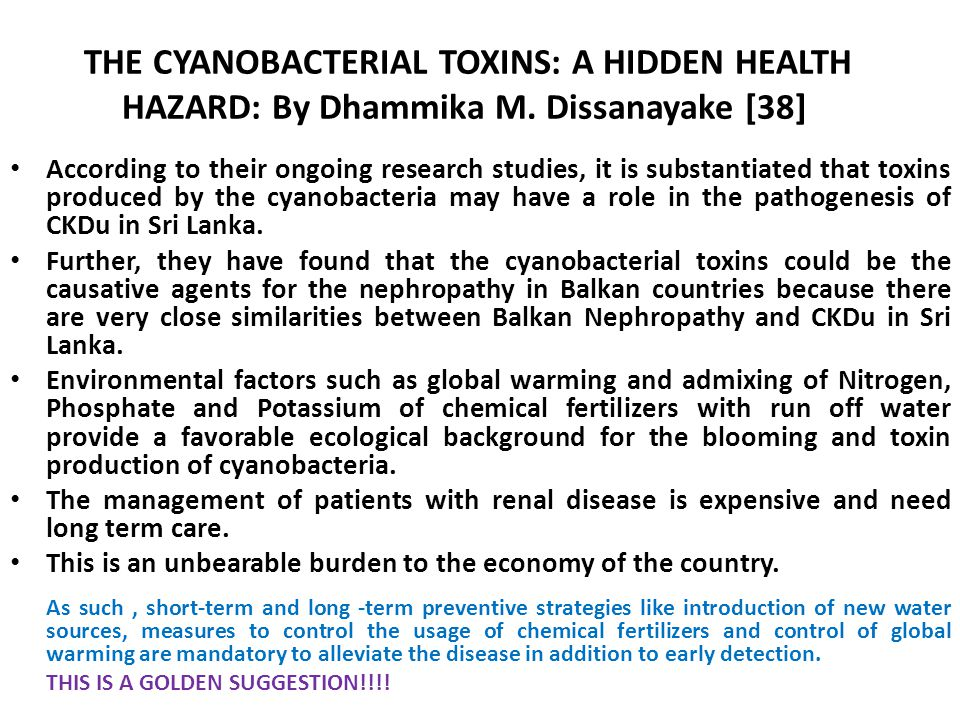 THE CYANOBACTERIAL TOXINS: A HIDDEN HEALTH HAZARD: By Dhammika M