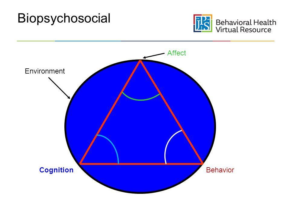 Biopsychosocial Affect Environment Cognition Behavior