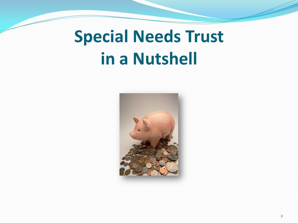 Special Needs Trust in a Nutshell