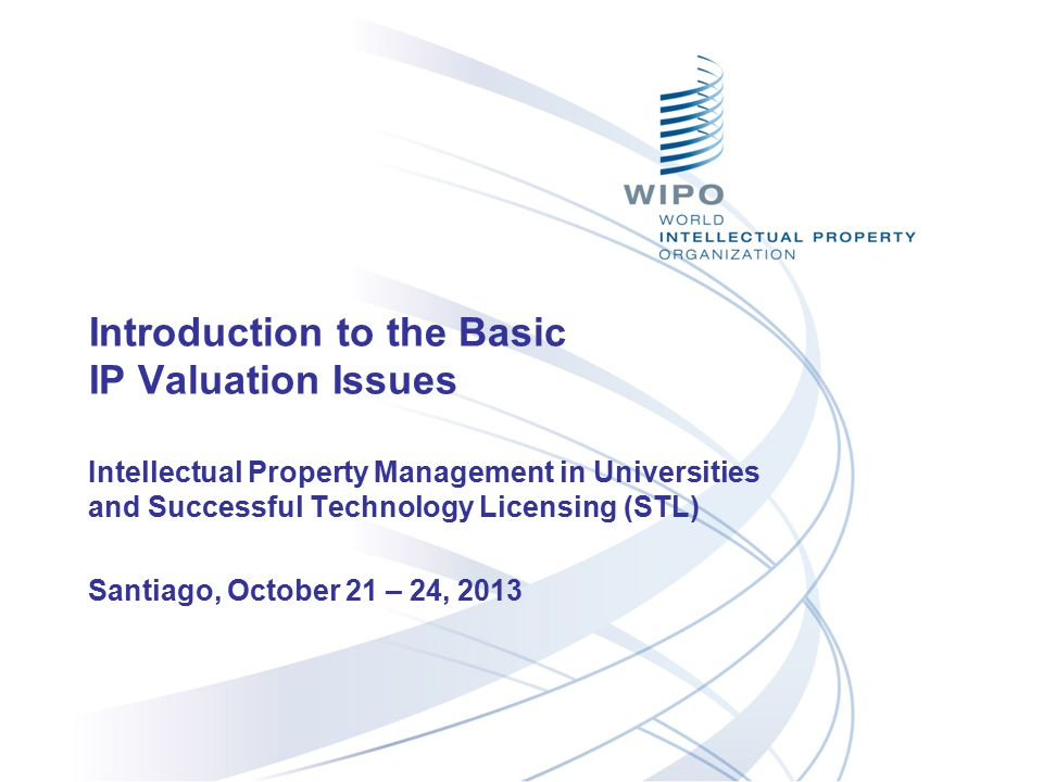 Introduction to the Basic IP Valuation Issues