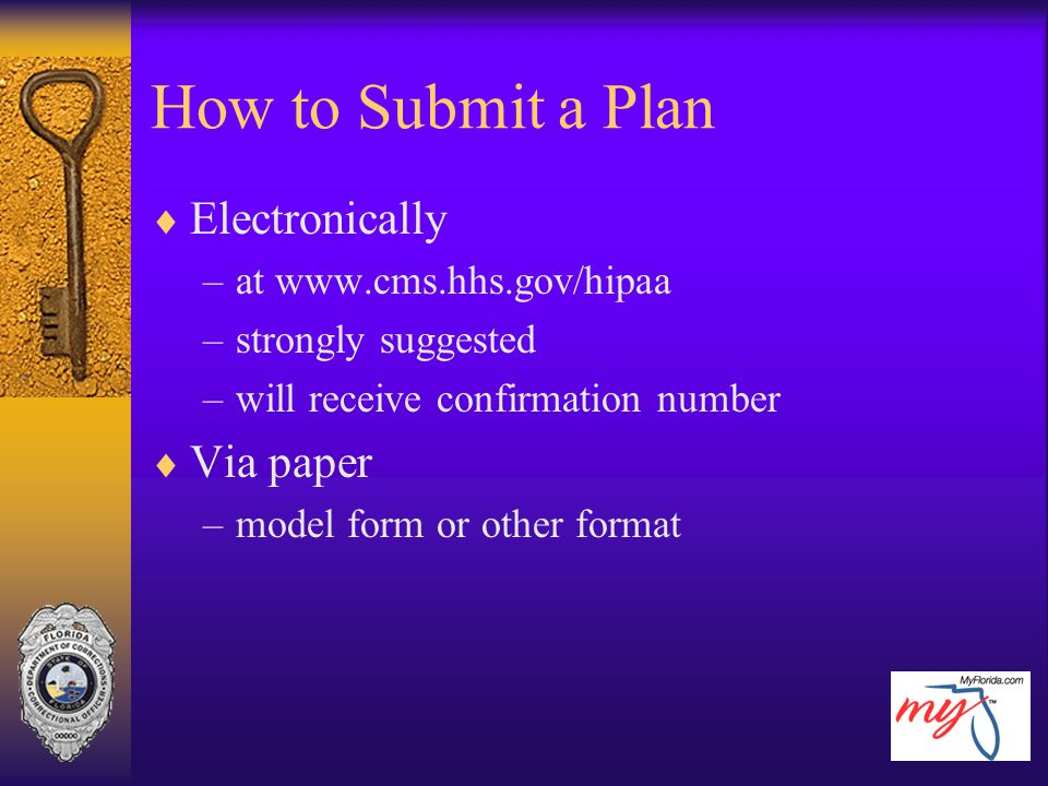 How to Submit a Plan Electronically Via paper at www.cms.hhs.gov/hipaa
