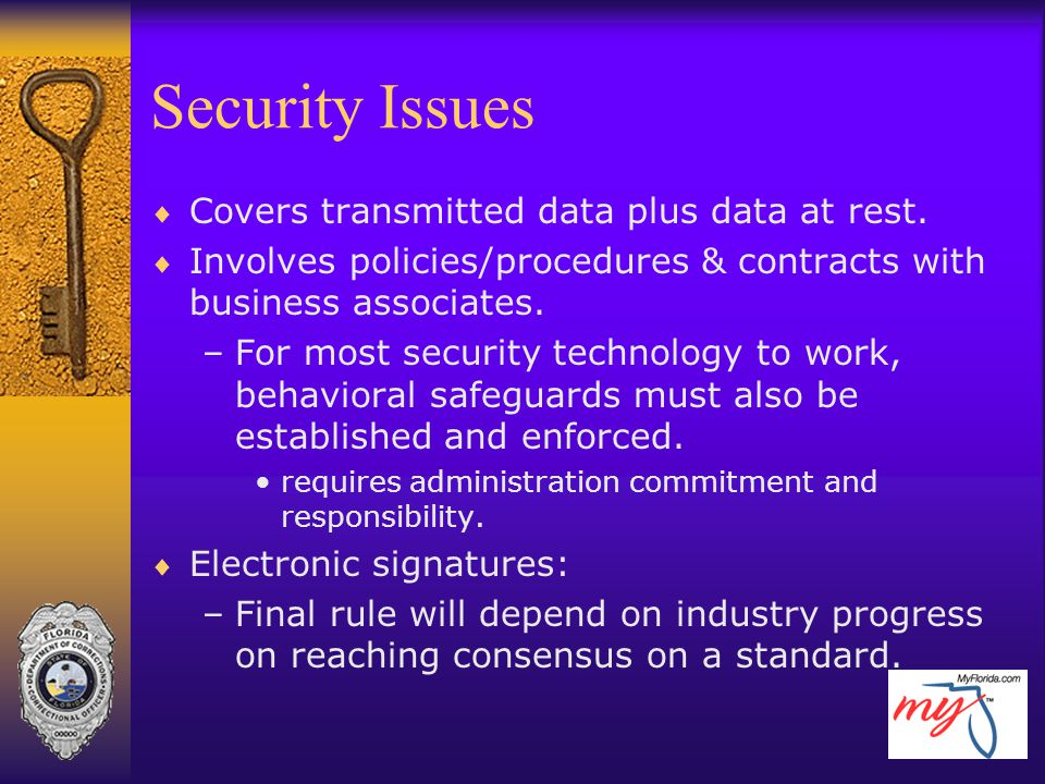 Security Issues Covers transmitted data plus data at rest.