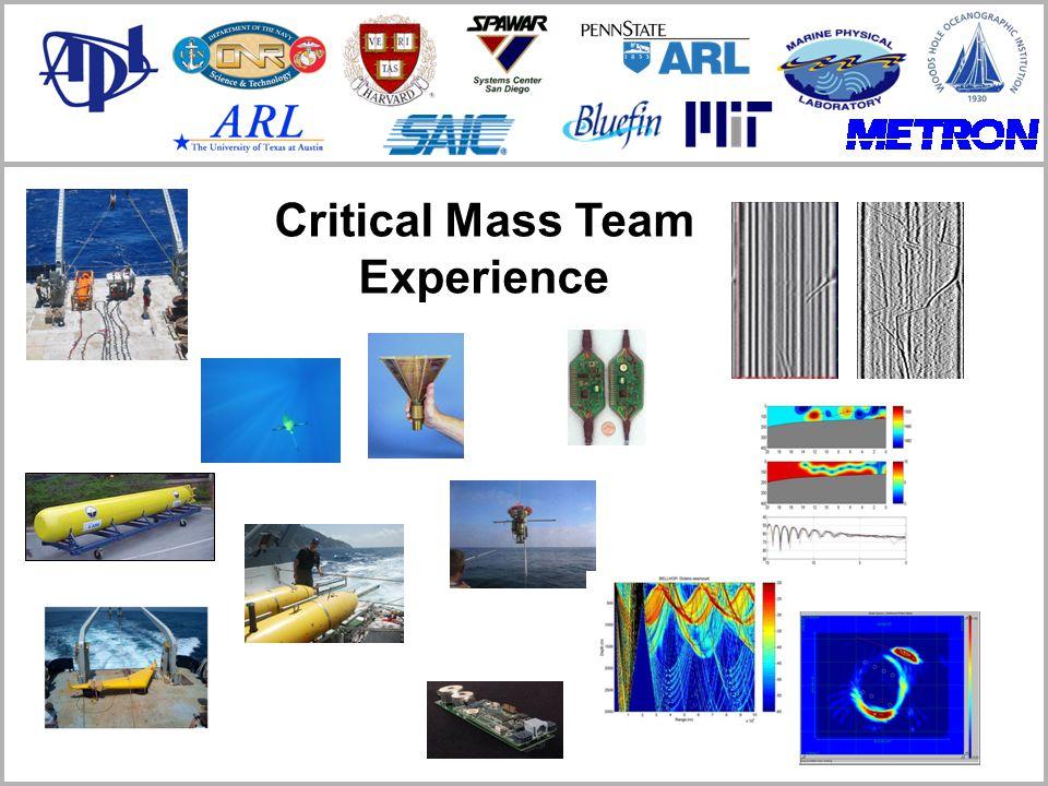 Critical Mass Team Experience
