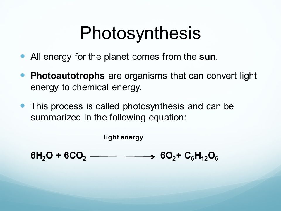 Photosynthesis All energy for the planet comes from the sun.