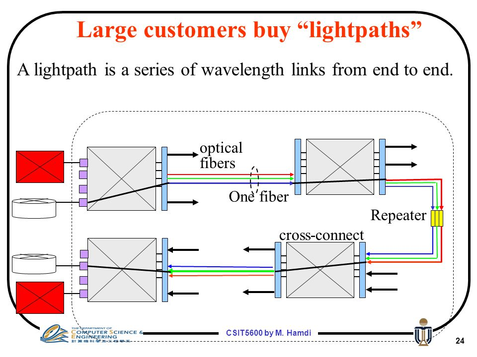Large customers buy lightpaths