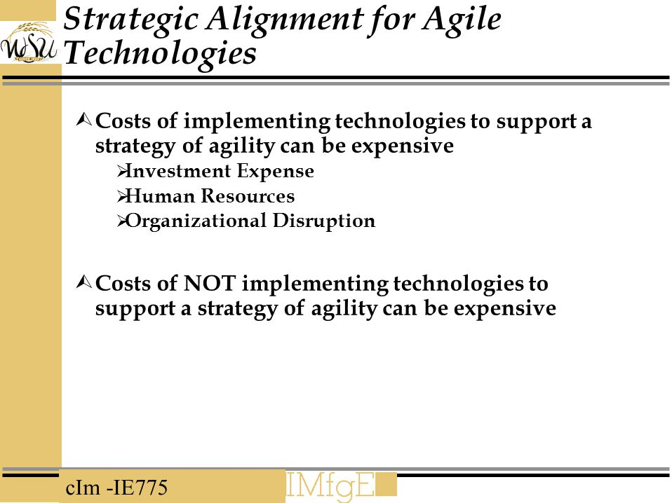 Strategic Alignment for Agile Technologies
