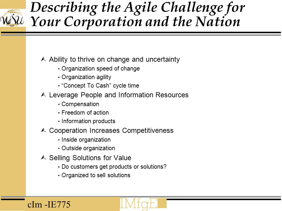 Describing the Agile Challenge for Your Corporation and the Nation