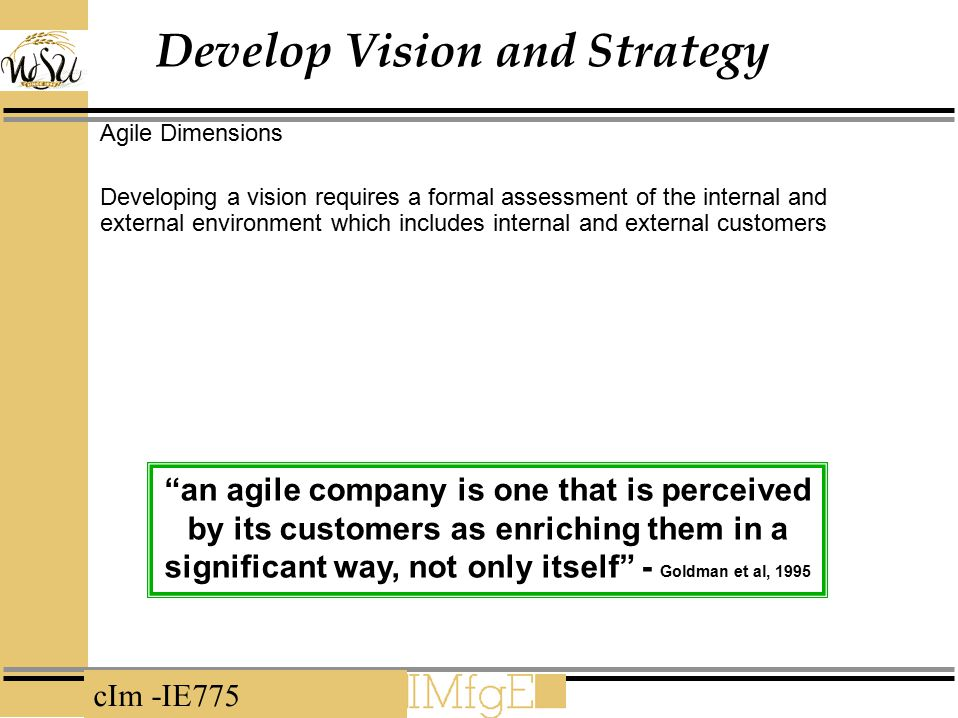 Develop Vision and Strategy