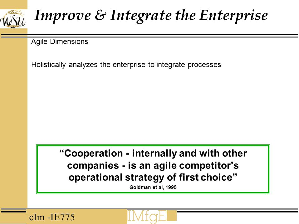 Improve & Integrate the Enterprise