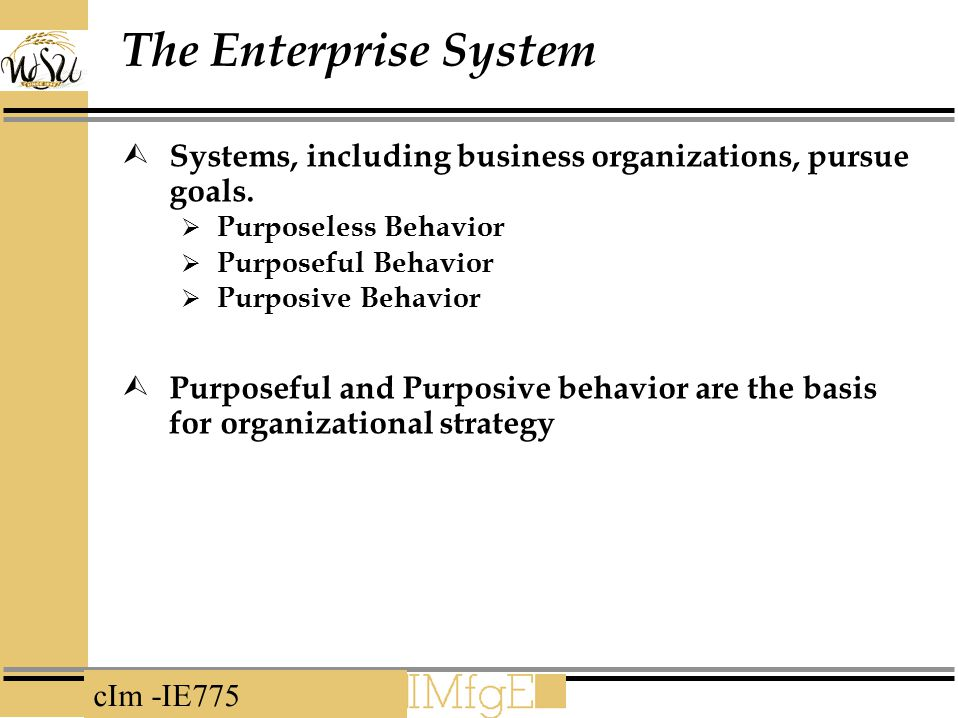The Enterprise System Systems, including business organizations, pursue goals. Purposeless Behavior.