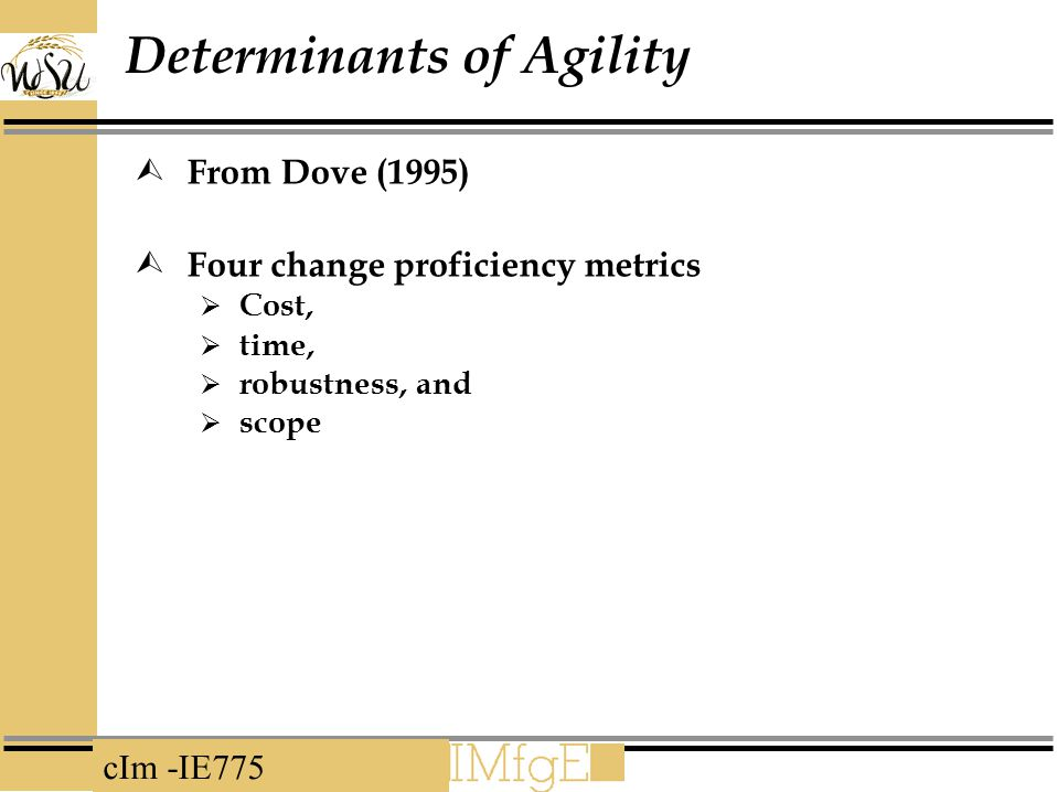 Determinants of Agility