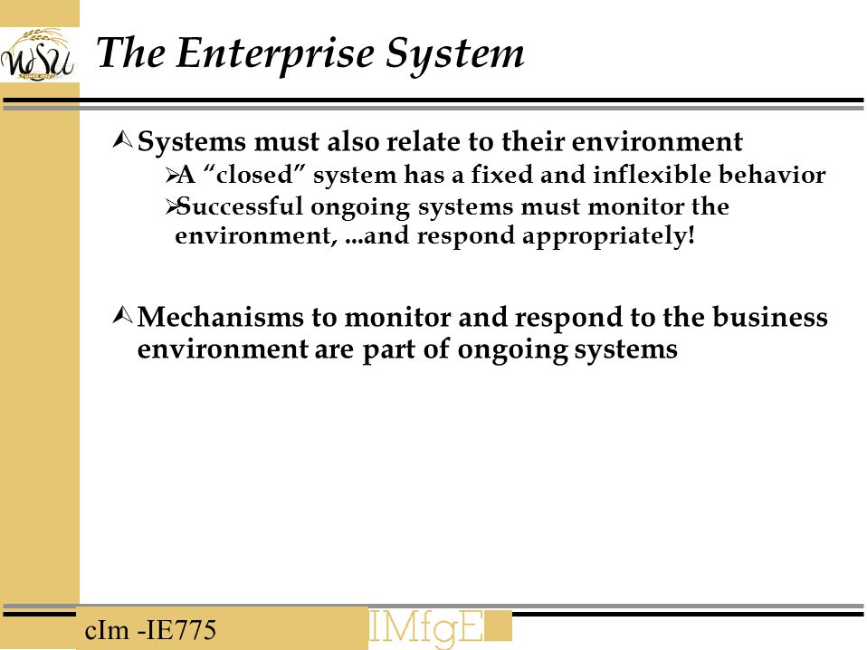 The Enterprise System Systems must also relate to their environment