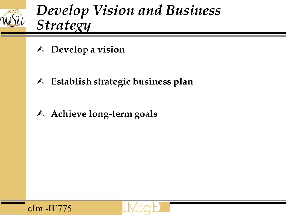Develop Vision and Business Strategy