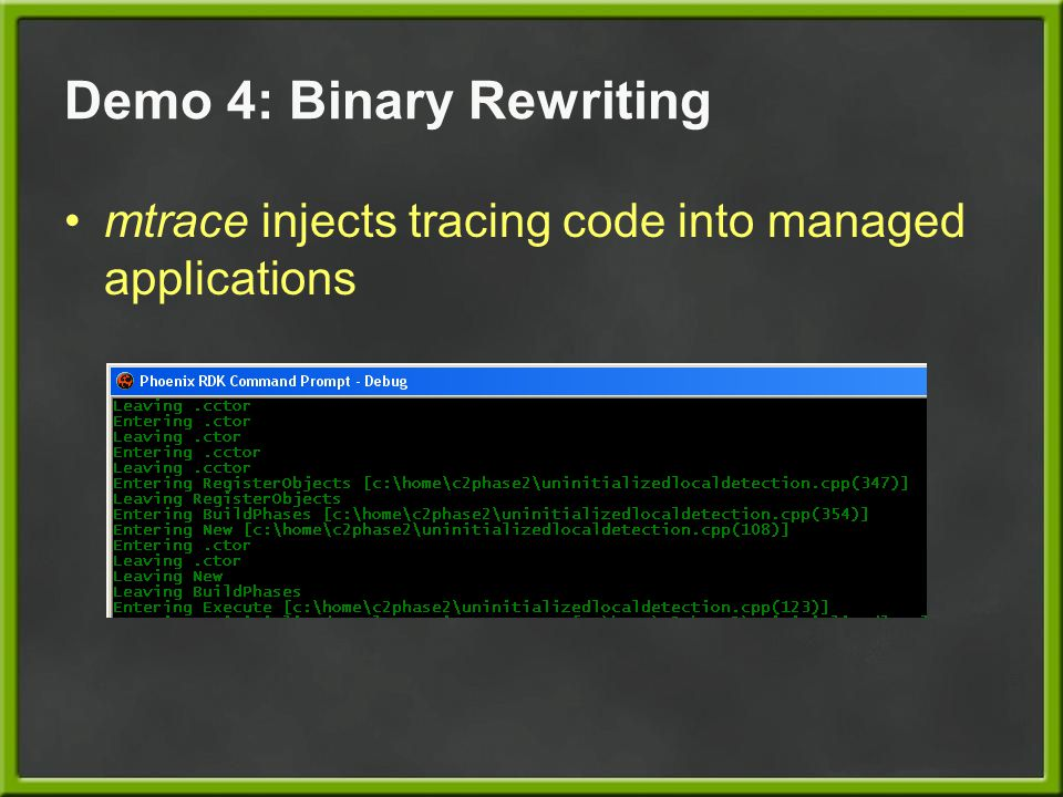Demo 4: Binary Rewriting