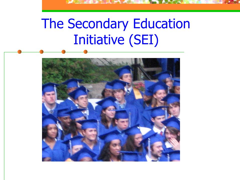 The Secondary Education Initiative (SEI)