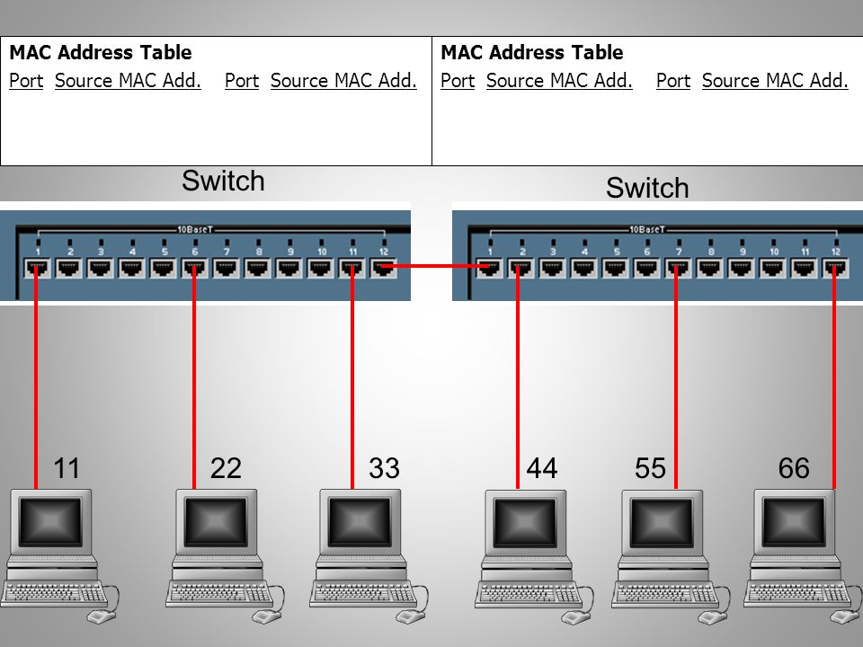 Switch Switch 11 22 33 44 55 66 MAC Address Table