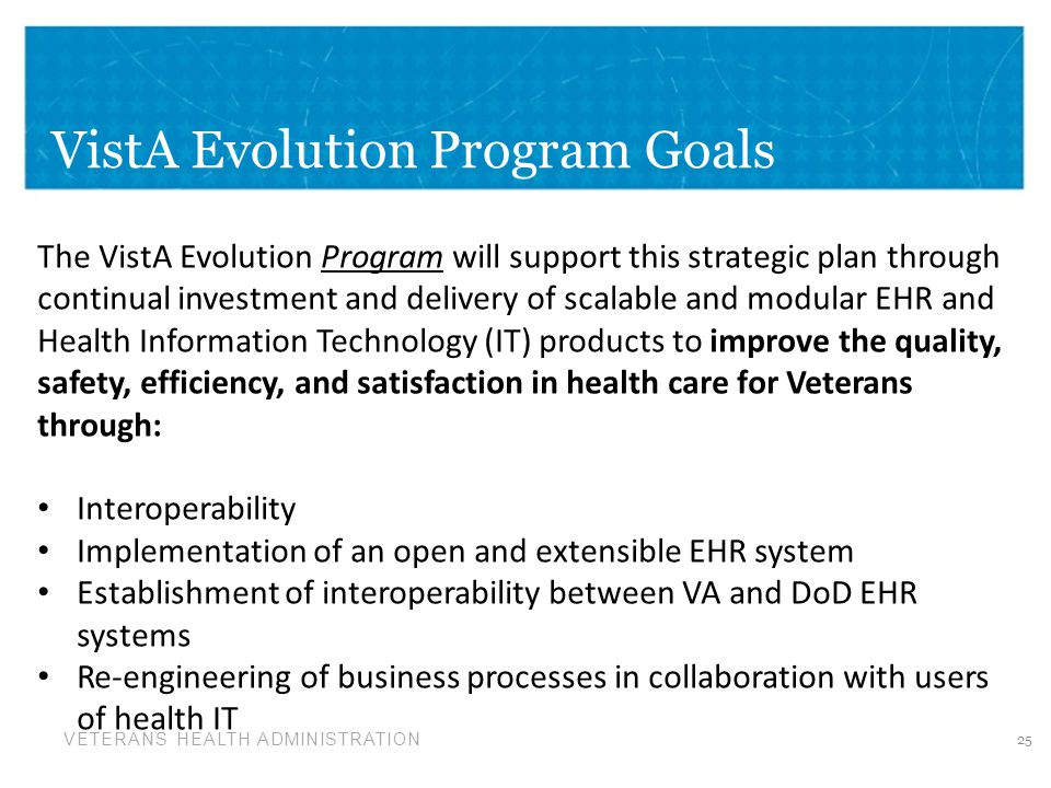 VistA Evolution Program Goals