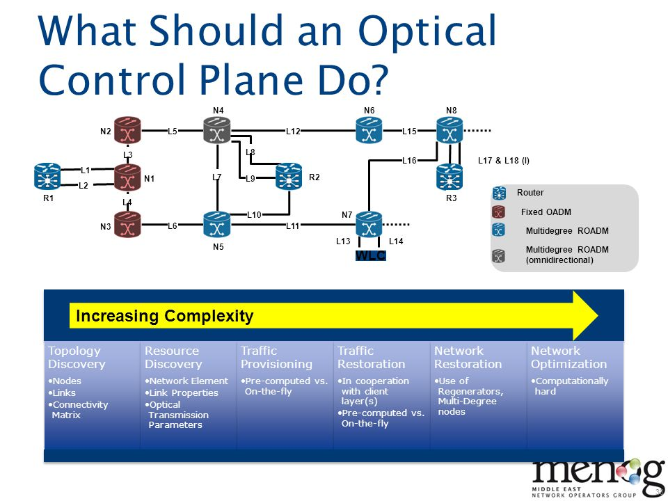 What Should an Optical Control Plane Do