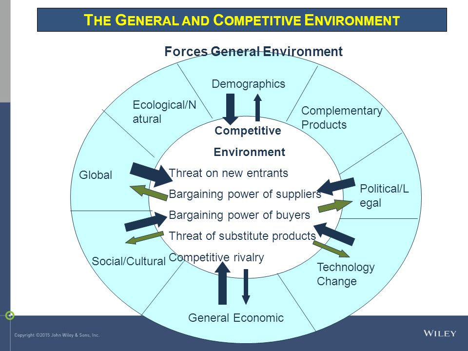The General and Competitive Environment