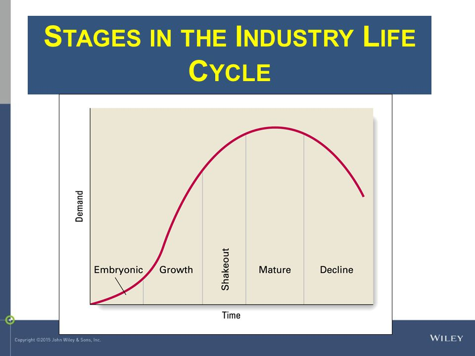 Stages in the Industry Life Cycle