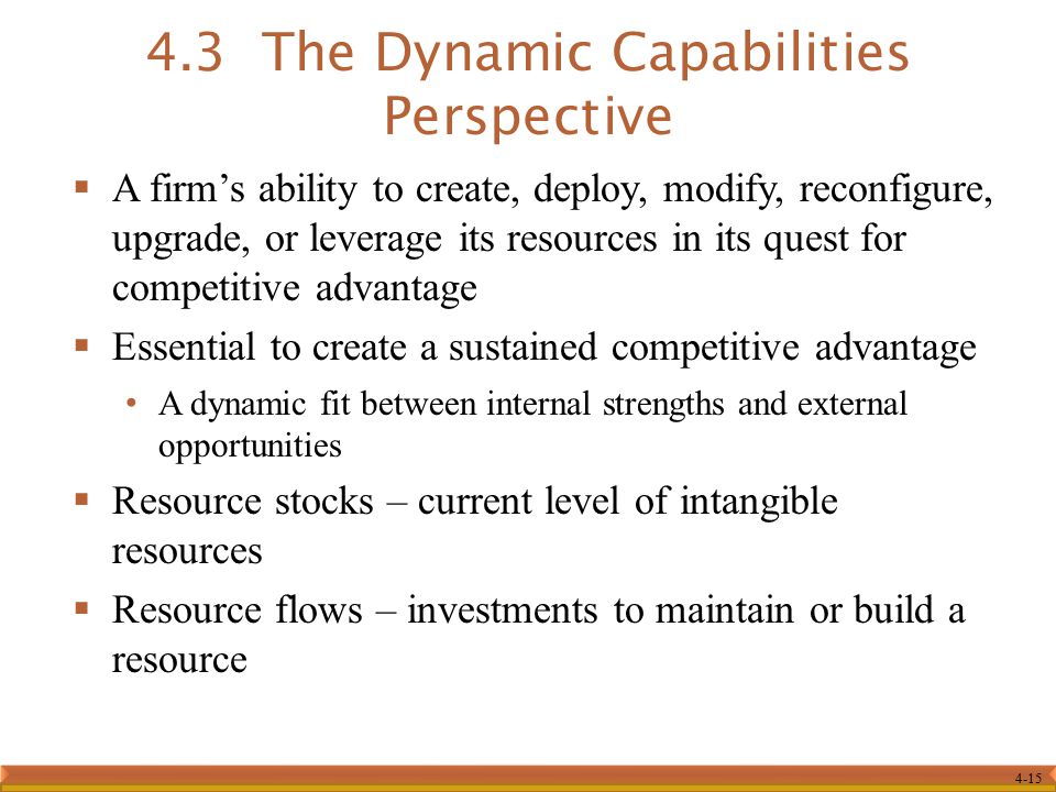 4.3 The Dynamic Capabilities Perspective