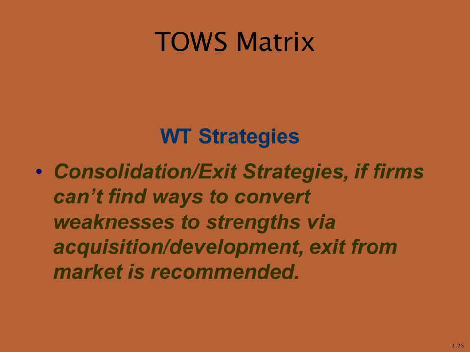 TOWS Matrix WT Strategies