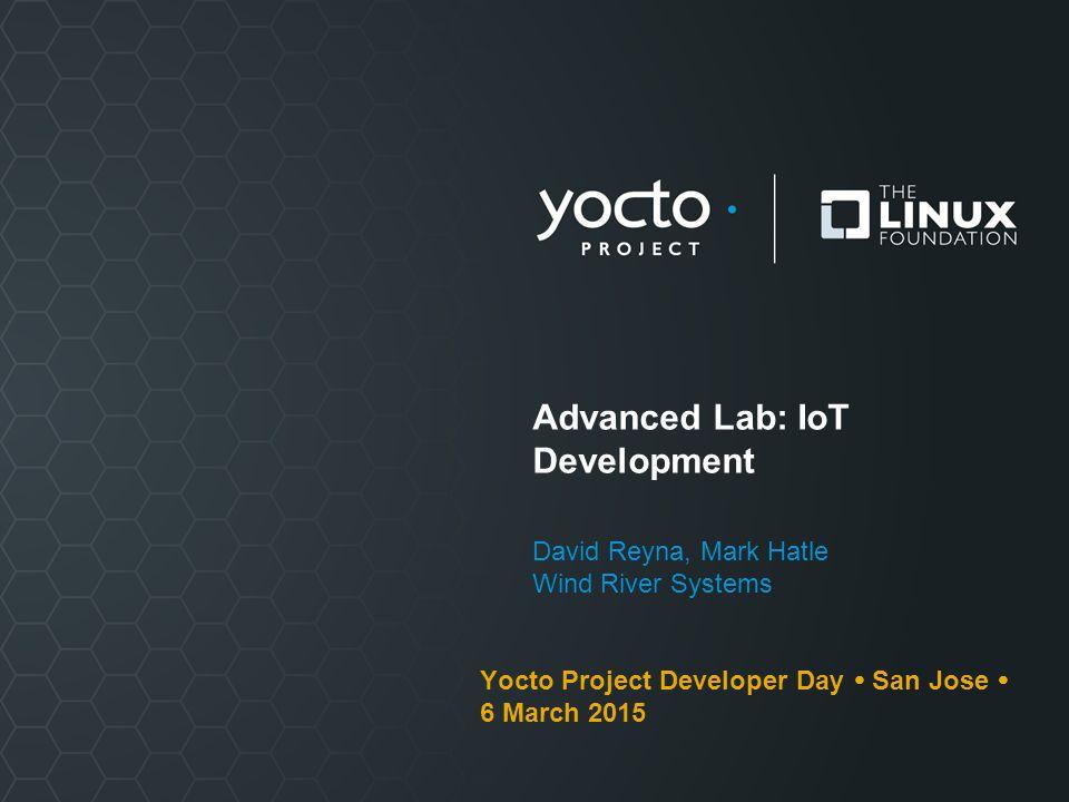 Advanced Lab: IoT Development