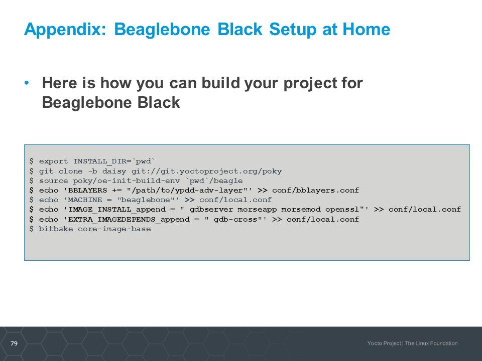 Appendix: Beaglebone Black Setup at Home