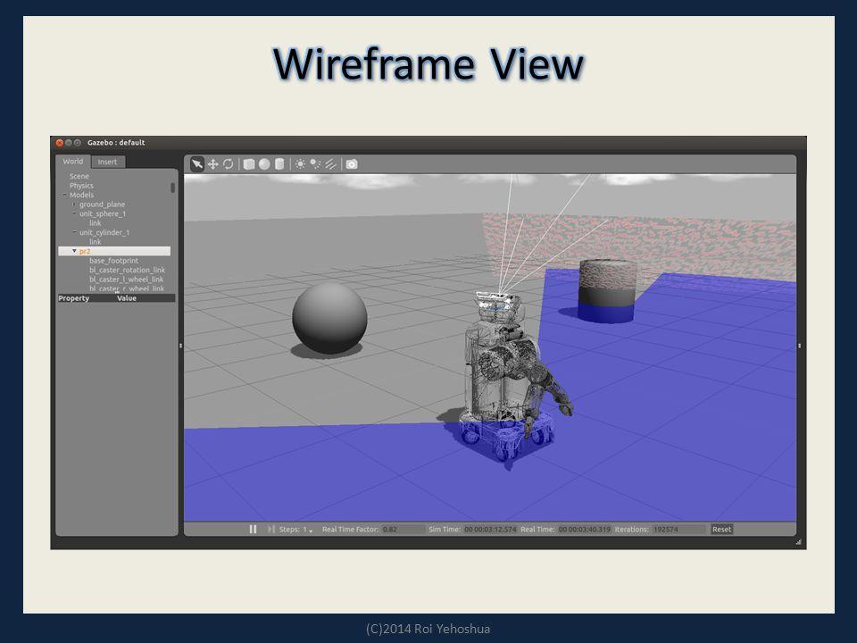 Wireframe View (C)2014 Roi Yehoshua