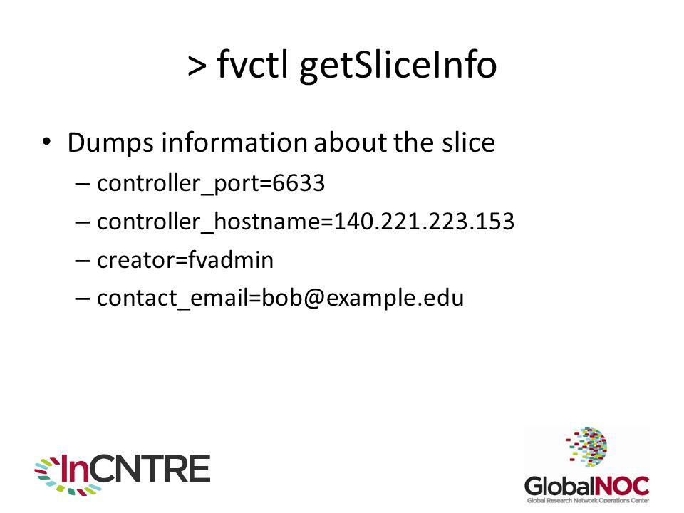 > fvctl getSliceInfo