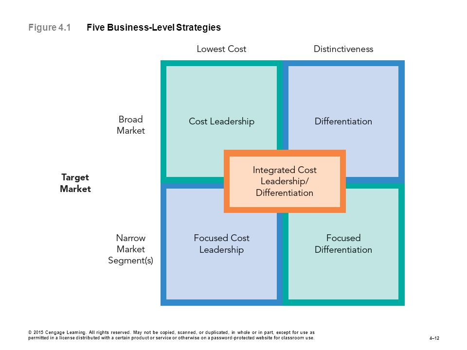 Figure 4.1 Five Business-Level Strategies