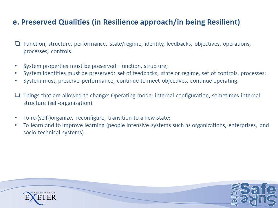 e. Preserved Qualities (in Resilience approach/in being Resilient)