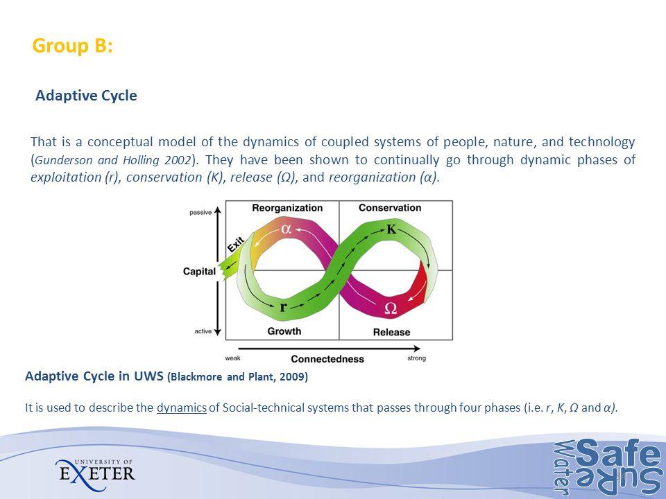 Group B: Adaptability, Adaptation, Adaptive Capacity, Redundancy
