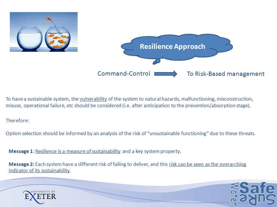 Challenge Resilience Approach Command-Control To Risk-Based management