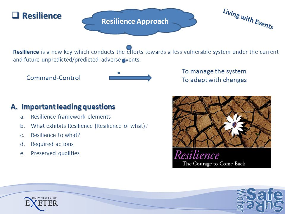 Resilience Resilience Approach Important leading questions